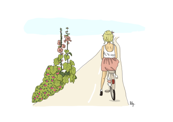 BICYCLETTE-ET-ROSES-TREMIERES